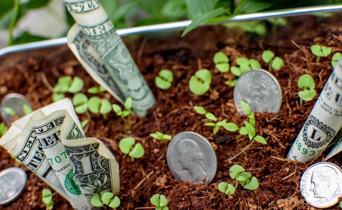 Cotação de dólar