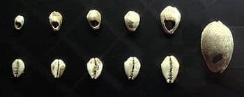 Conchas utilizadas como moeda entre os séculos 16 e 8 a.C. na China